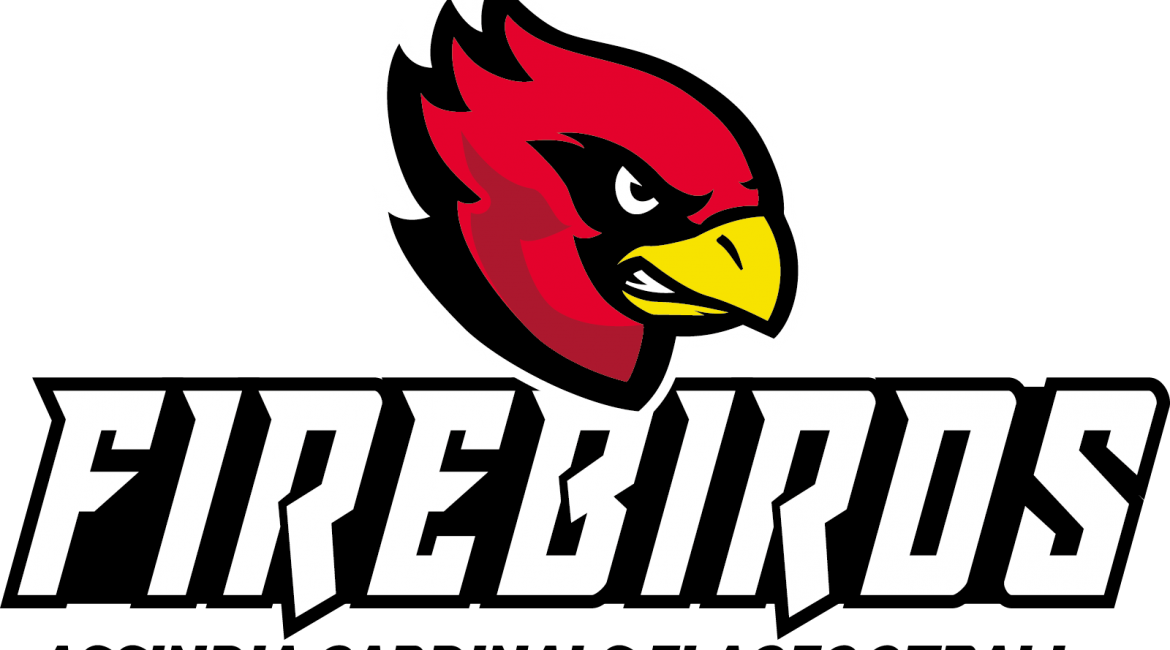 Assindia Cardinals Firebirds
